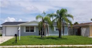 Photo of 3137 SALISBURY DRIVE, HOLIDAY, FL 34691 (MLS # U8055202)