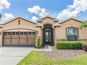 Photo of 9982 GAP WEDGE DRIVE, SAN ANTONIO, FL 33576 (MLS # T3184241)