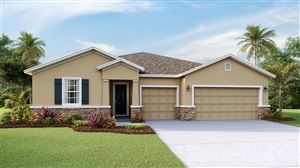 Photo of 2521 KNIGHT ISLAND DRIVE, BRANDON, FL 33511 (MLS # T3194332)