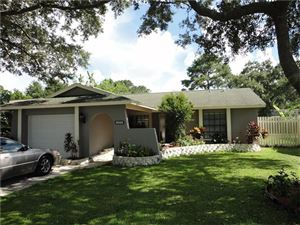 Photo of 3160 CYPRESS GREEN DR, PALM HARBOR, FL 34684 (MLS # U7829588)