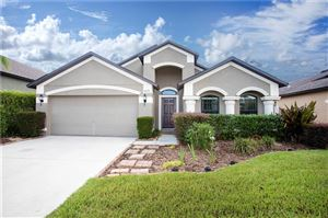 Photo of 6636 BOULDER RUN LOOP, WESLEY CHAPEL, FL 33545 (MLS # T3187709)