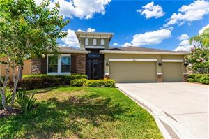 Photo of 29243 GRASS BUNKER DRIVE, SAN ANTONIO, FL 33576 (MLS # U8045953)