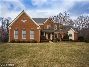 Photo of 11694 CARIS GLENNE DR, HERNDON, VA 20170 (MLS # FX10180315)