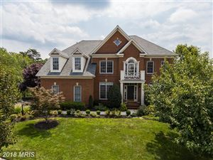 Photo of 18908 GOOSE BLUFF CT, LEESBURG, VA 20176 (MLS # LO10160687)