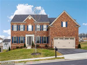 Photo of 26059 BLACKBERRY KNOLL CT, ALDIE, VA 20105 (MLS # LO10118973)