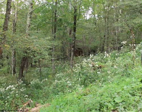 Photo of Lot 31 W Meadows Road, Harman, WV 26270 (MLS # 10132145)