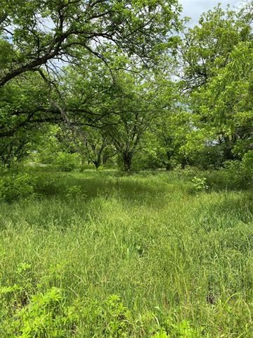 Tiny photo for Lot 1 County Road 496, Rising Star, TX 76471 (MLS # 14573238)