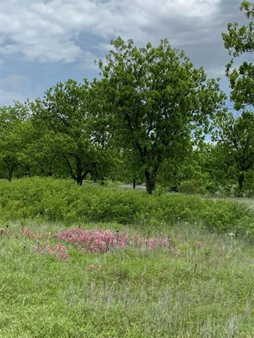 Photo for Lot 1 County Road 496, Rising Star, TX 76471 (MLS # 14573238)