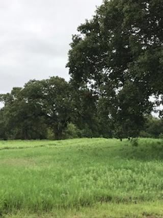 Tiny photo for TBD 2A N Katy Ranch Court N, Weatherford, TX 76085 (MLS # 14053375)