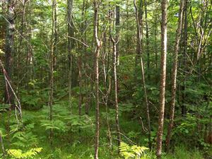 Photo of TBD Campbell #PCL 1, Florence, WI 54121 (MLS # 1112582)