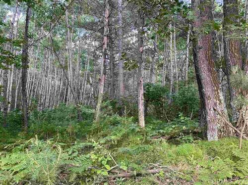 Photo of TBD Glenwood Pines #3, Florence, WI 54121 (MLS # 1127897)