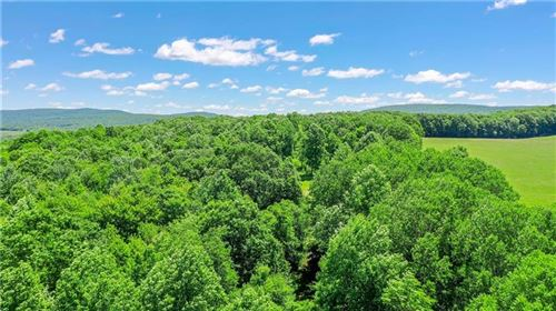Photo of 0 Lower Whites Crk, Confluence, PA 15424 (MLS # 1385705)