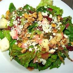Fall Salad with Cranberry Vinaigrette Recipe
