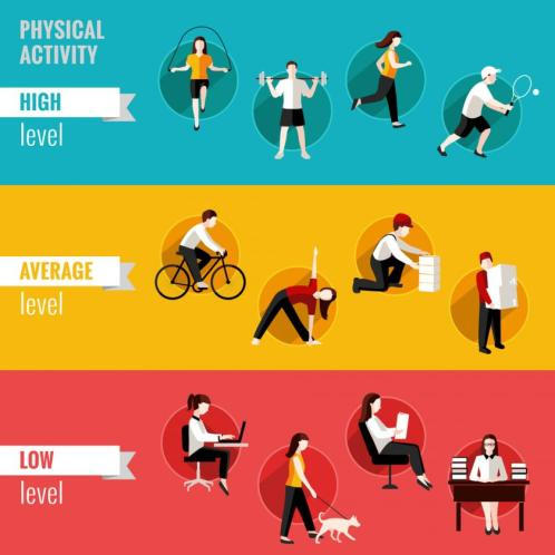 Image result for sedentary lifestyle