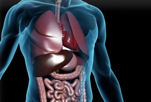 5-Step 'Healthy Living' Plan May Ease Chronic Heartburn 2