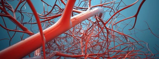 One-Dose Blood Thinner Could Slash Blood Clot Risk After Knee Replacement 2