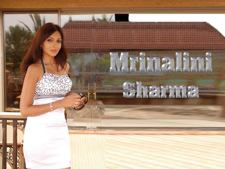 Mrinalini Sharma Nice Look Standing Wallpaper