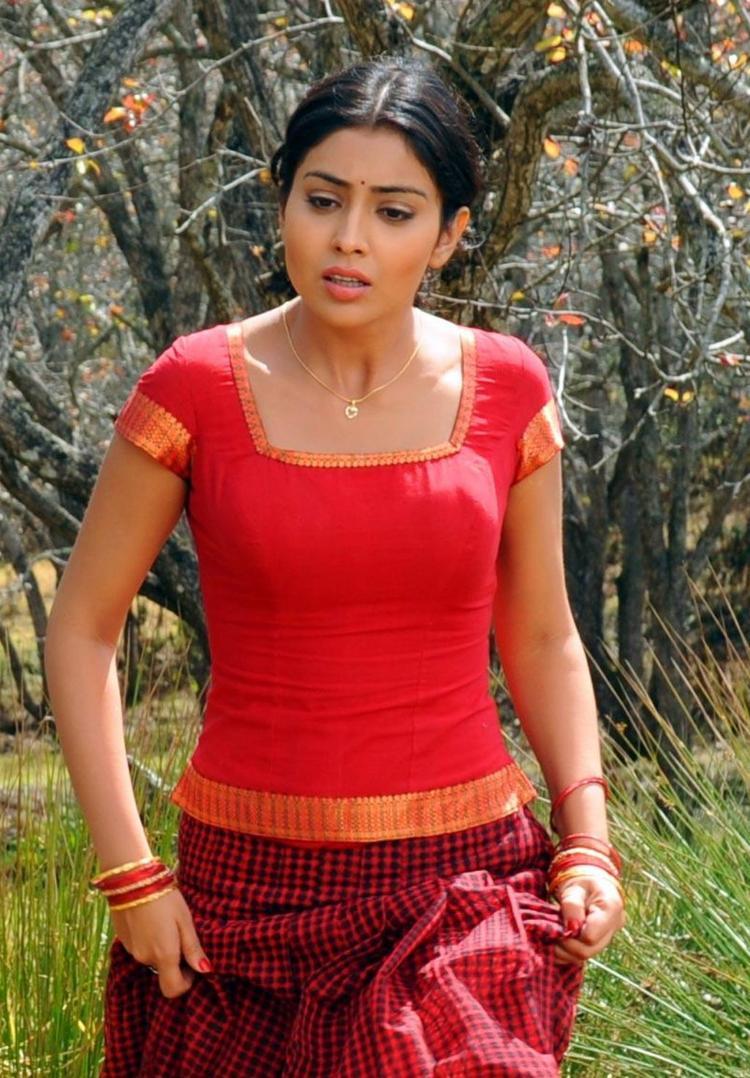 Shriya Saran Film Pic