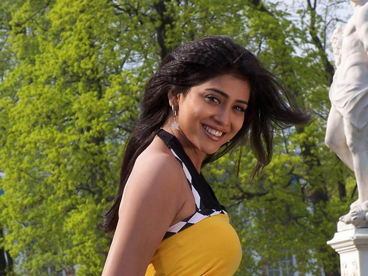 Shriya Saran Smiling Face Pic