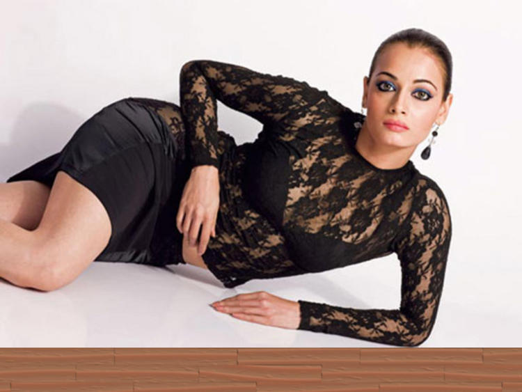 Diya Mirza Sexy Net Dress Spicy Hot Pose Photo Shoot