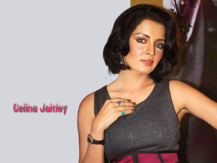 Celina Jaitley Short Hair Sexy Look Wallpaper