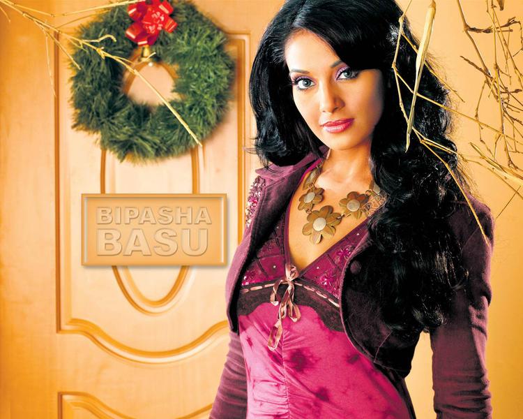 Bipasha Basu Awesome Beauty Face Look Wallpaper