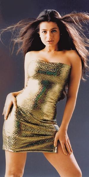 Amisha Patel Strapless Dress Hot Pics