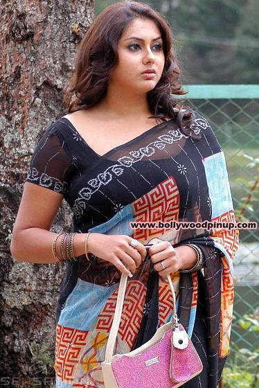 Namitha Stunning Pic In Saree