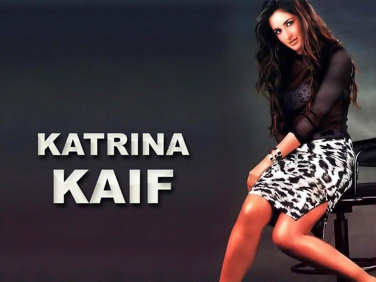 Katrina Kaif Glossy Legs Pose In Mini Dress