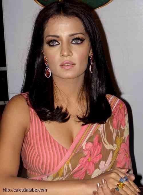 Celina Jaitley Sexy Pink Saree Pic