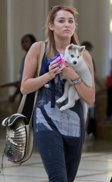 Miley Cyrus With Cute Puppy