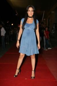 Celina Jaitley Hot Stylist Photo On Red Carpet
