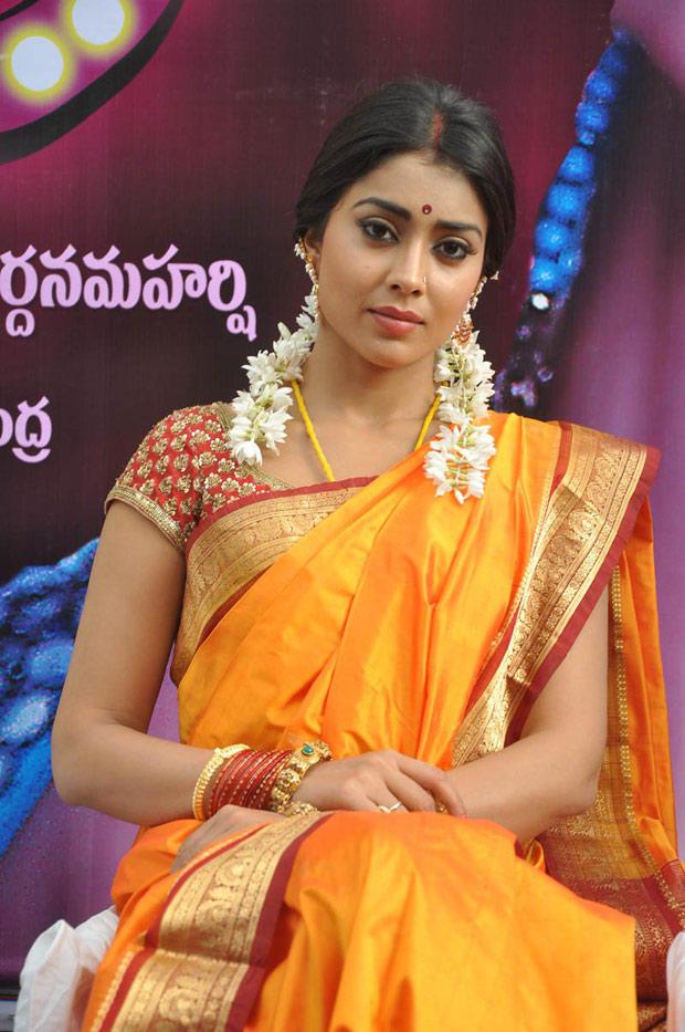 Shriya Saran In Saree Glamour Look Still