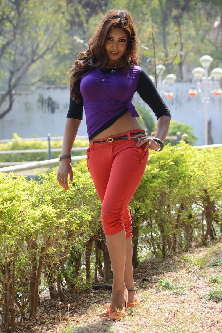 Komal Jha Spicy Pose Photo Still From Movie Eduruleni Alexander