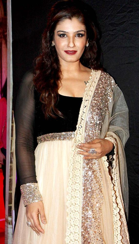Raveena Posed For Camera In A Manish Malhotra Gown At Stardust Awards 2013