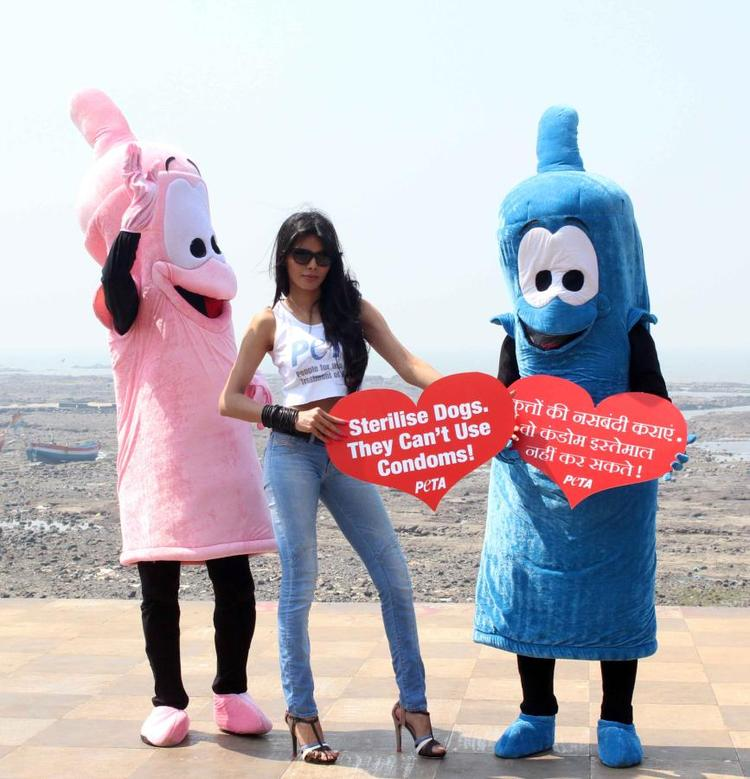 Sherlyn Chopra Clicked At Promotion Of PETA's Safe Sex For Animals Campaign
