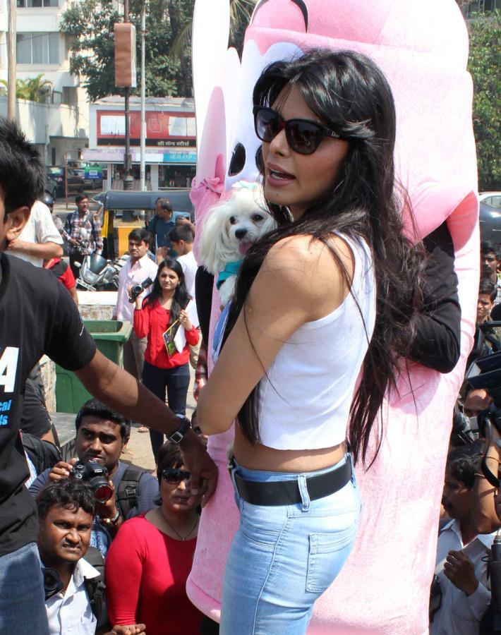 Sherlyn Chopra Glamour Look At Promotion Of PETA's Safe Sex For Animals Campaign
