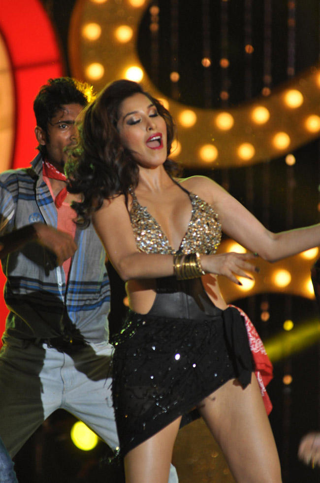 Sophie Choudry Sexy Look Dance Pose At The Music Launch Of Shootout At Wadala
