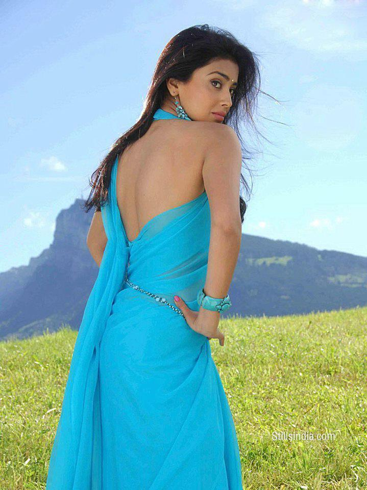 Shriya Saran Sexy Back Look Photo Still In A Deep Sky Saree
