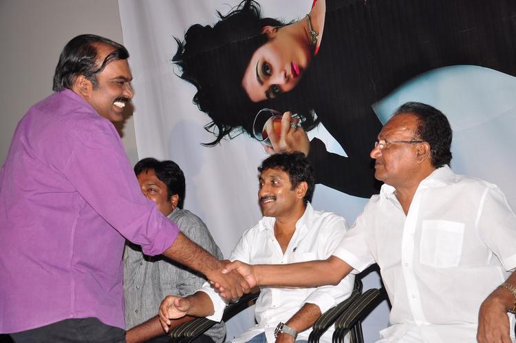Srinu Vaitla Smiling Look At Prema Oka Maikam Movie Audio Release Function