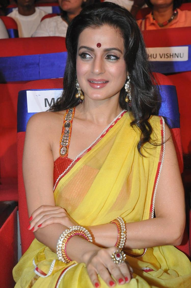 Ameesha Patel Gorgeous Look At TSR TV9 Film Awards Function