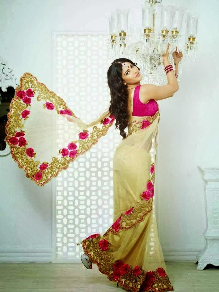 Shruti Haasan Stunning Look In Saree Photo Shoot For Kalanjali Ad