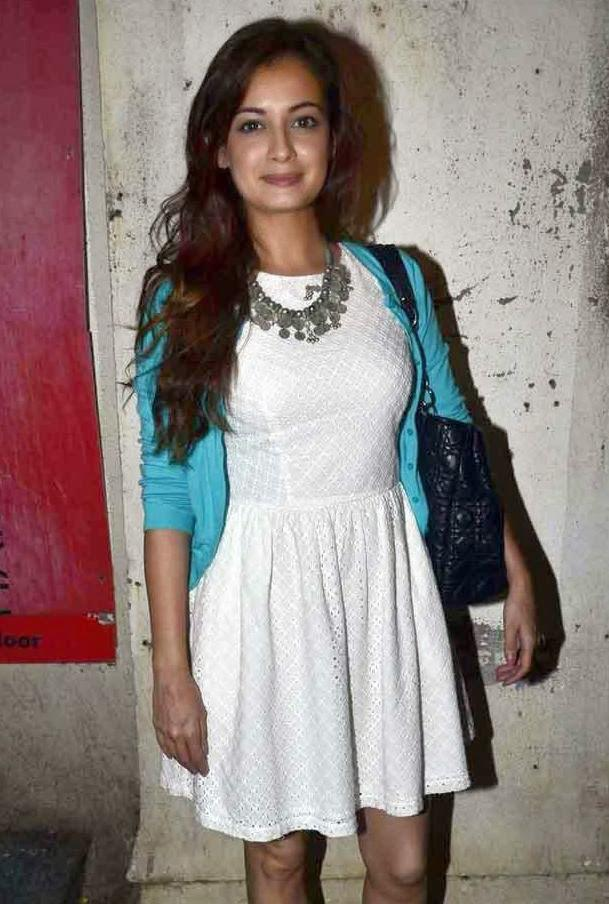 Dia Mirza Stunning Look During The Finding Fanny Screening Hosted By Homi Adjania