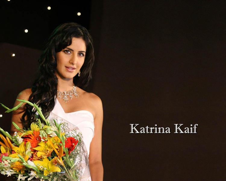 Katrina Kaif Nice Hair Style Sizzling Wallpaper