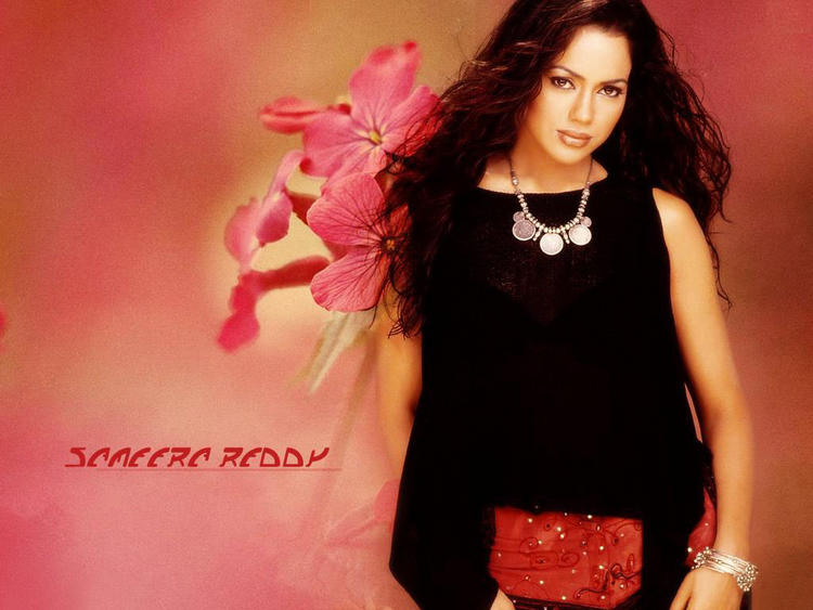 Sameera Reddy Gorgeous Hot Face Wallapper