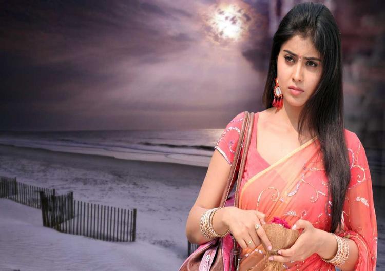 Shriya Saran In Saree Gorgeous Pic