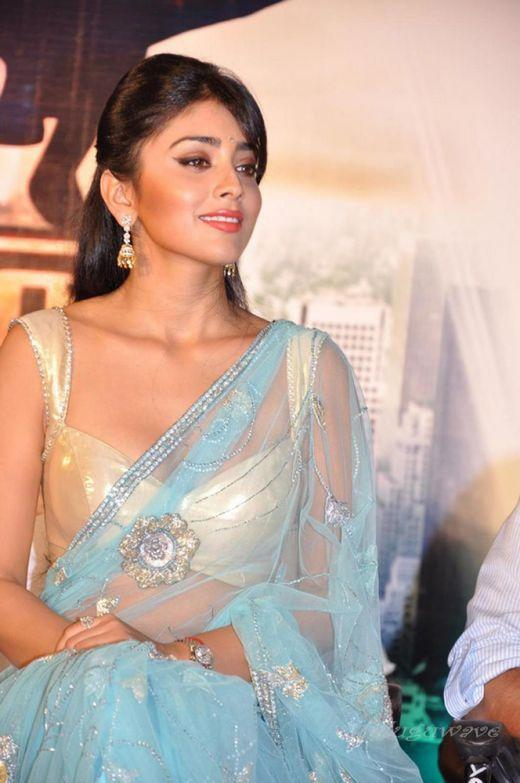 Shriya Saran Transparent Saree Sexy Still