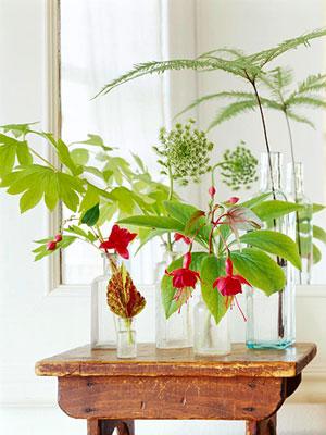 individual flowers in stem vases