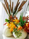 Pumpkin flower pot - close-up
