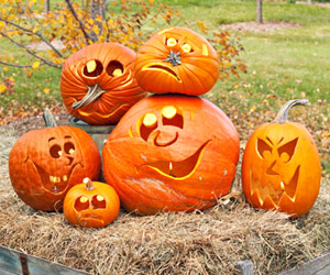 Group of pumpkins on hay